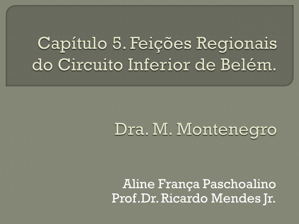 Aline França Paschoalino Prof.Dr. Ricardo Mendes Jr.