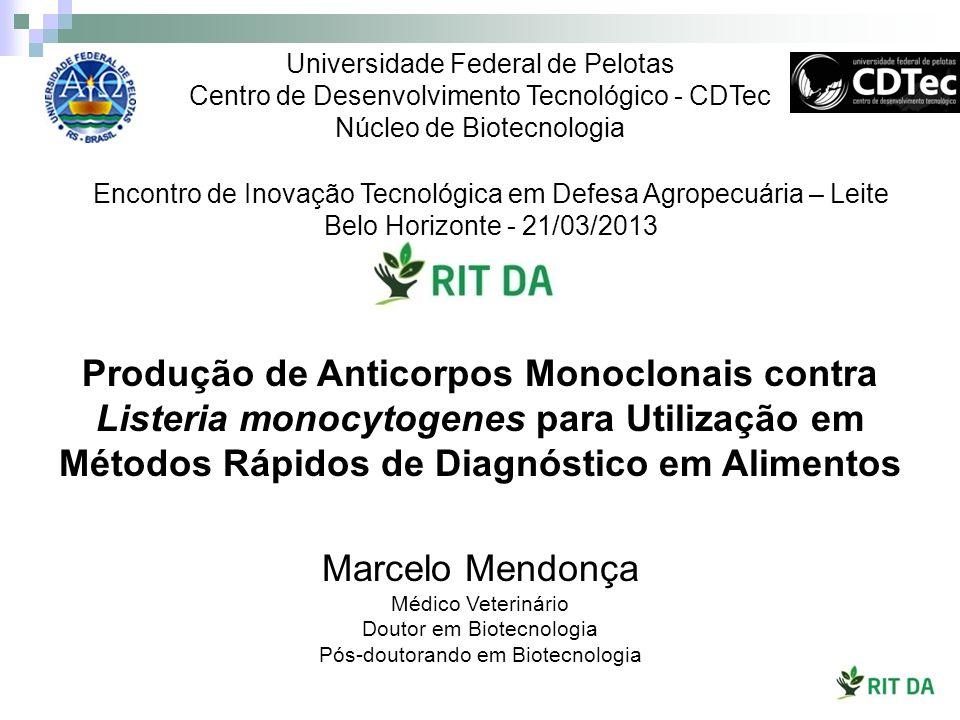 Universidade Federal de Pelotas Centro de Desenvolvimento Tecnológico - CDTec Núcleo de Biotecnologia Marcelo Mendonça Médico Veterinário Doutor em Bi