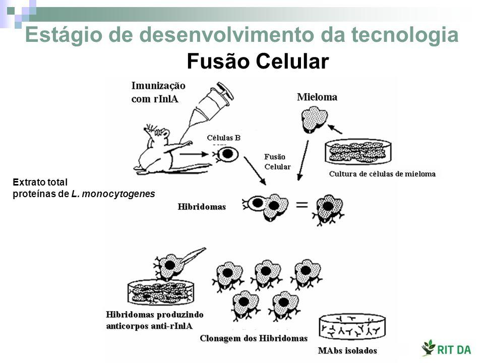 Fusão Celular Estágio de desenvolvimento da tecnologia Extrato total proteínas de L. monocytogenes