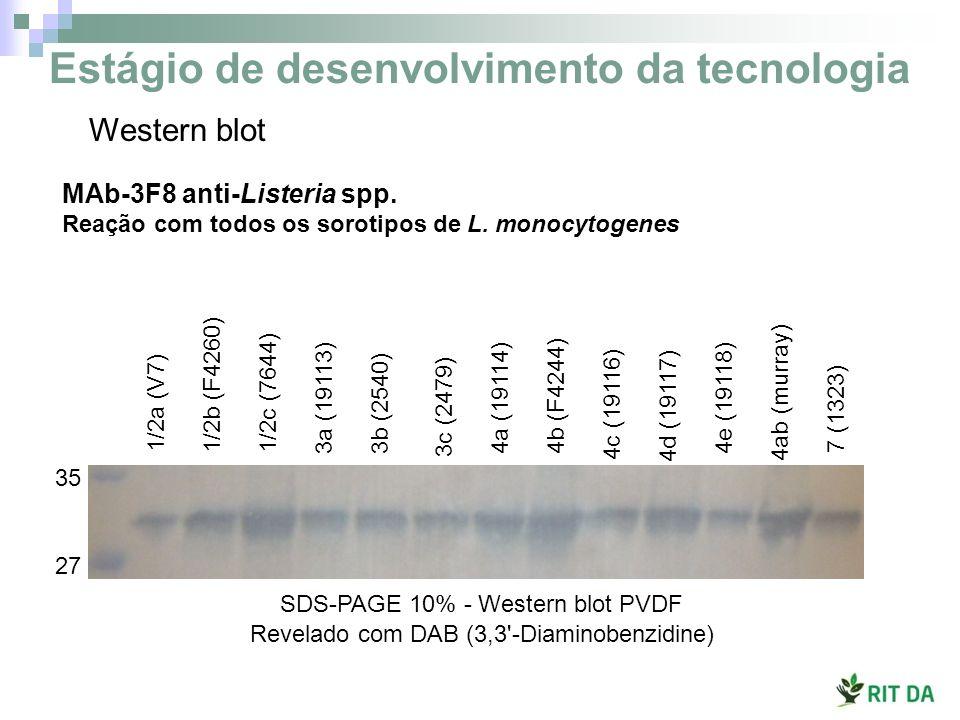 1/2a (V7) 1/2b (F4260) 1/2c (7644) 3a (19113) 3b (2540) 3c (2479) 4a (19114) 4b (F4244) 4c (19116) 4d (19117) 4ab (murray) 7 (1323) 4e (19118) SDS-PAG