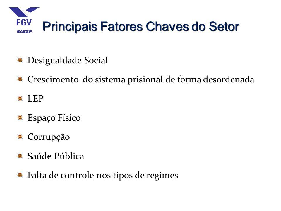 Principais Fatores Chaves do Setor Desigualdade Social Crescimento do sistema prisional de forma desordenada LEP Espaço Físico Corrupção Saúde Pública