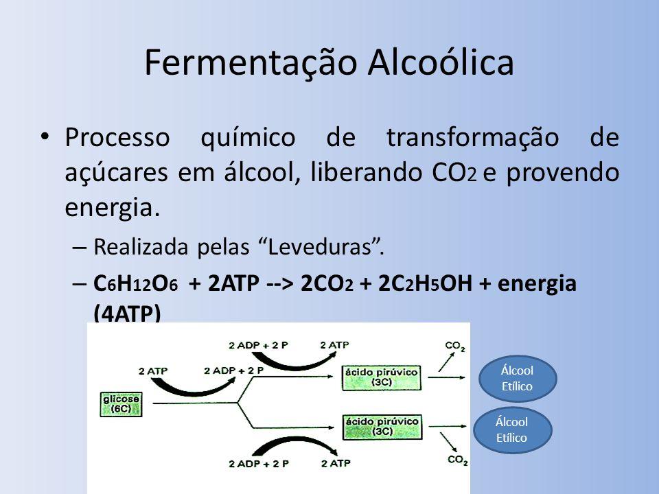 Fermentação Alcoólica Processo químico de transformação de açúcares em álcool, liberando CO 2 e provendo energia. – Realizada pelas Leveduras. – C 6 H