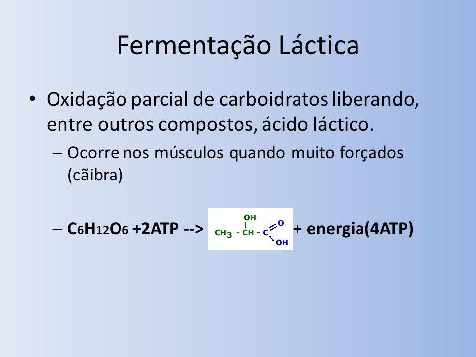Fermentação Láctica Oxidação parcial de carboidratos liberando, entre outros compostos, ácido láctico. – Ocorre nos músculos quando muito forçados (cã