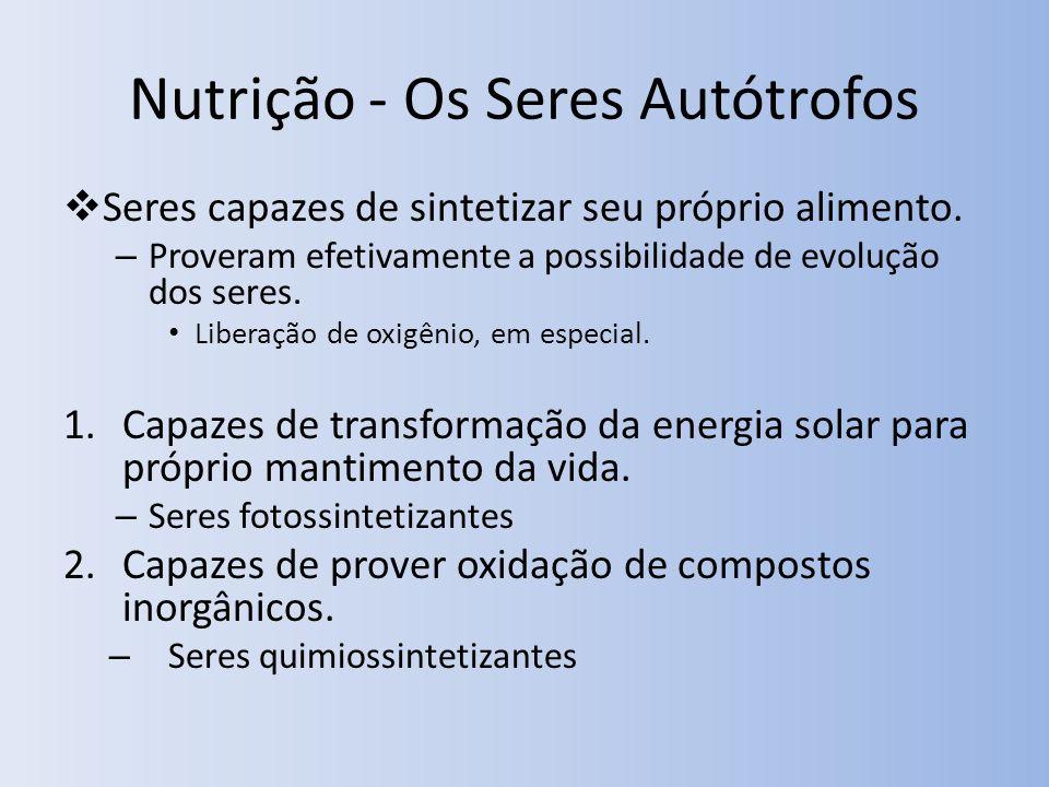 Nutrição - Os Seres Autótrofos Seres capazes de sintetizar seu próprio alimento. – Proveram efetivamente a possibilidade de evolução dos seres. Libera