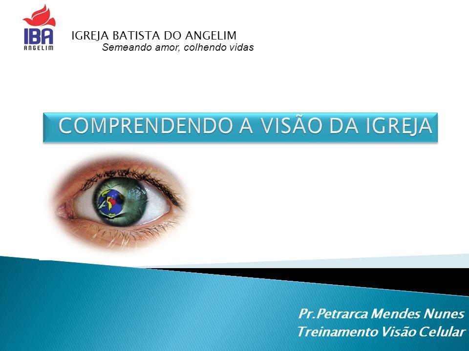Pr.Petrarca Mendes Nunes Treinamento Visão Celular Semeando amor, colhendo vidass IGREJA BATISTA DO ANGELIM