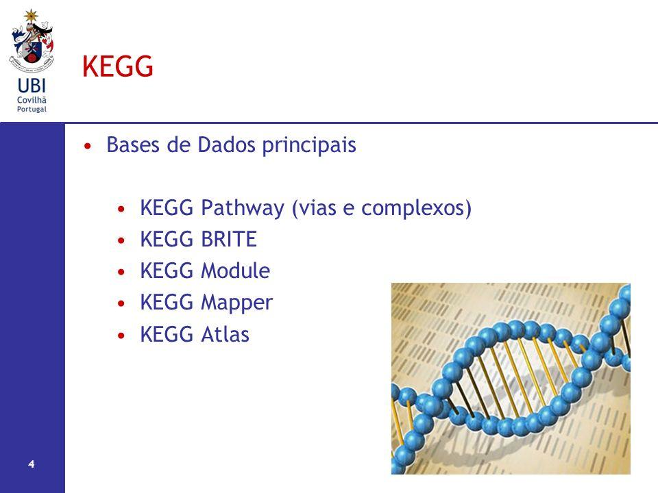 KEGG Bases de Dados principais KEGG Pathway (vias e complexos) KEGG BRITE KEGG Module KEGG Mapper KEGG Atlas 4