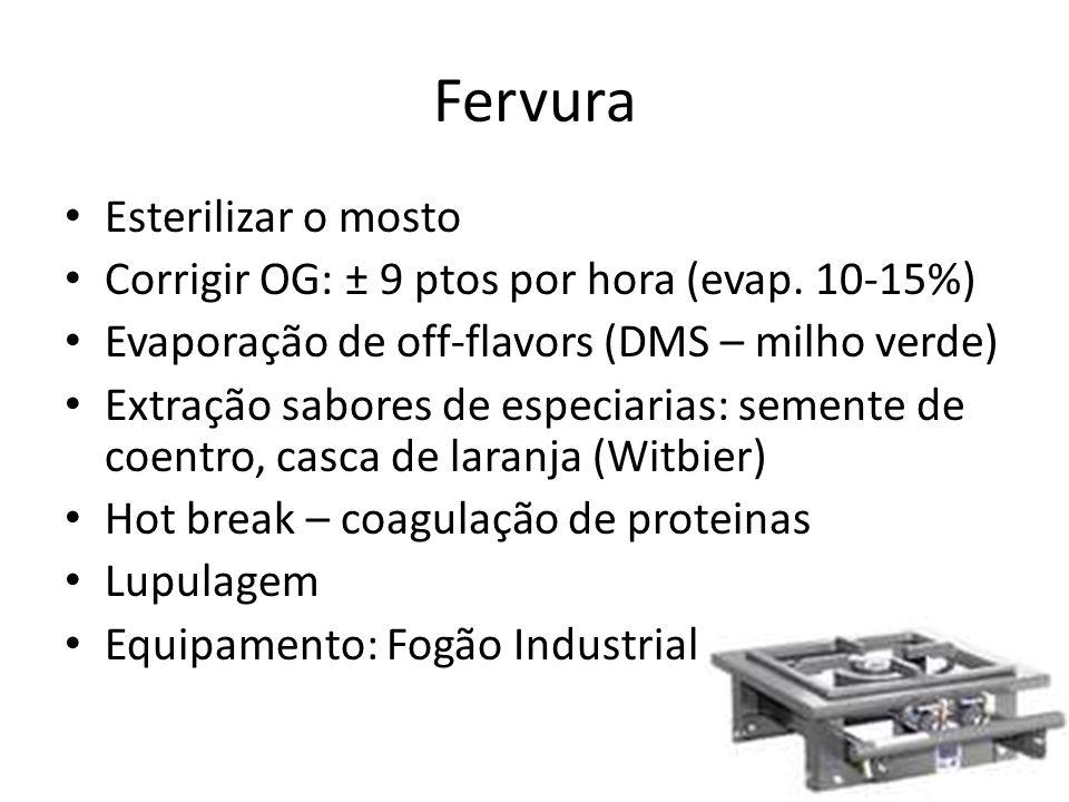 Esterilizar o mosto Corrigir OG: ± 9 ptos por hora (evap.