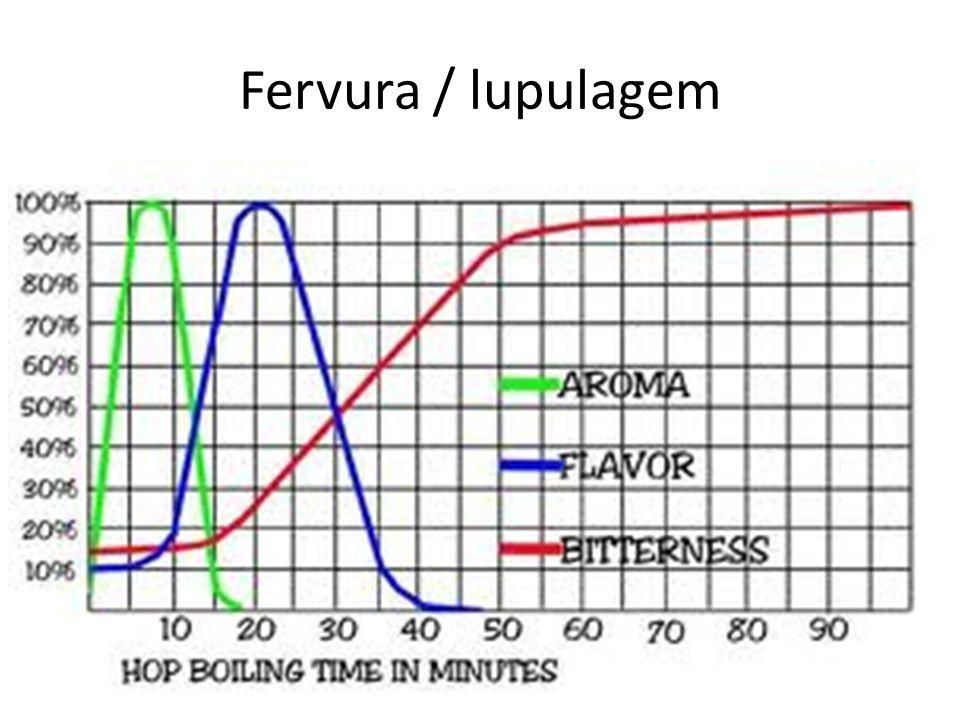 Fervura / lupulagem