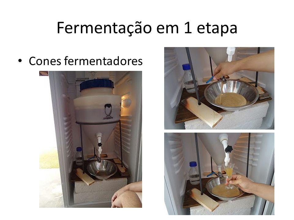 Cones fermentadores Fermentação em 1 etapa