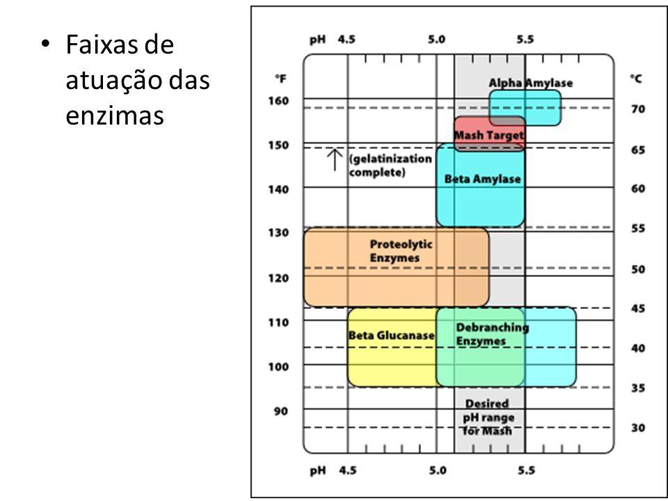 Início da fervura: Retirar a capa de proteína (espuma).