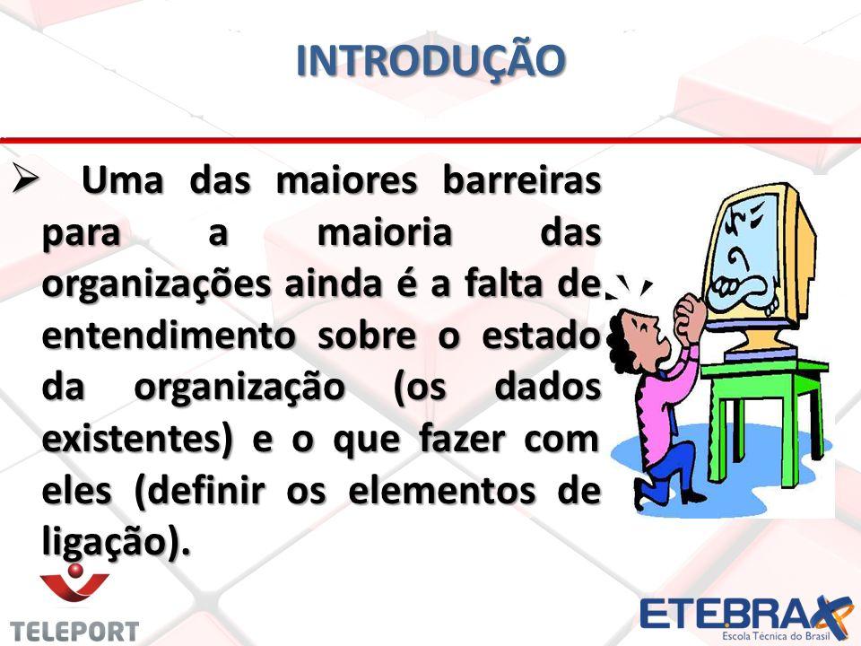 IMPORTÂNCIA E OS RECURSOS DA TI PARA UMA ORGANIZAÇÃO TIC – AULA 05
