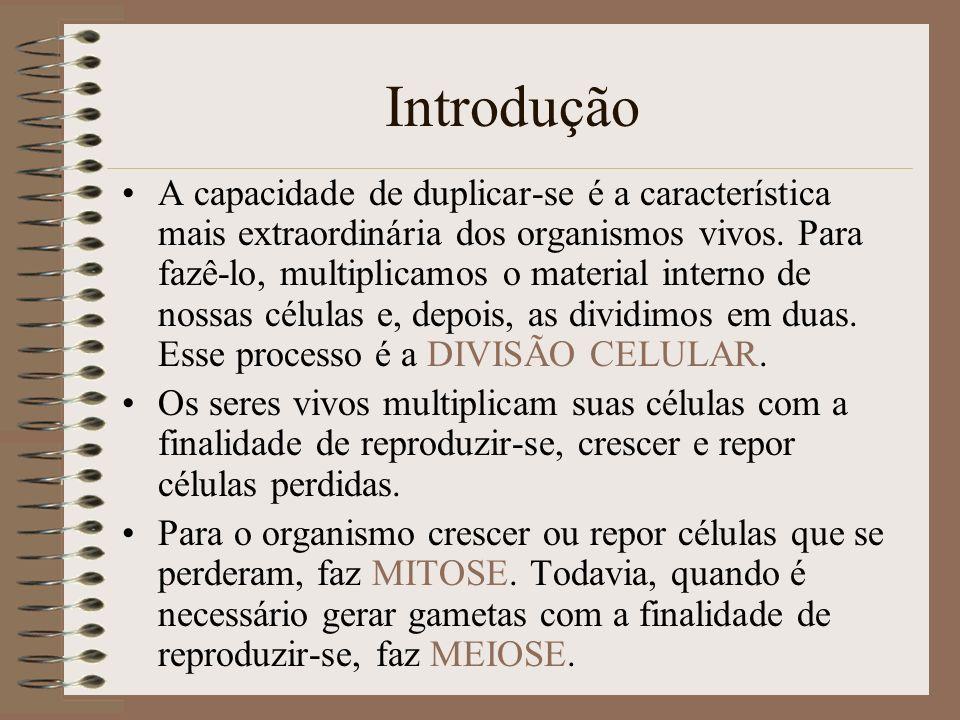 Ciclo Celular Período que se inicia com a origem da célula, a partir da divisão de uma célula pré-existente, e termina quando ela se divide em duas células-filhas.