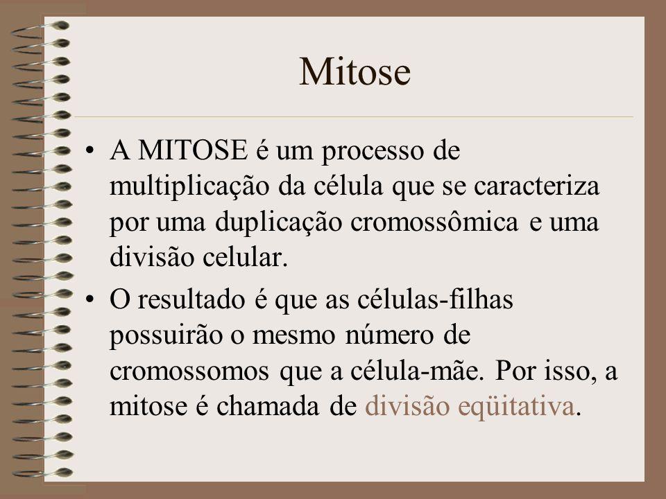 Mitose A MITOSE é um processo de multiplicação da célula que se caracteriza por uma duplicação cromossômica e uma divisão celular. O resultado é que a