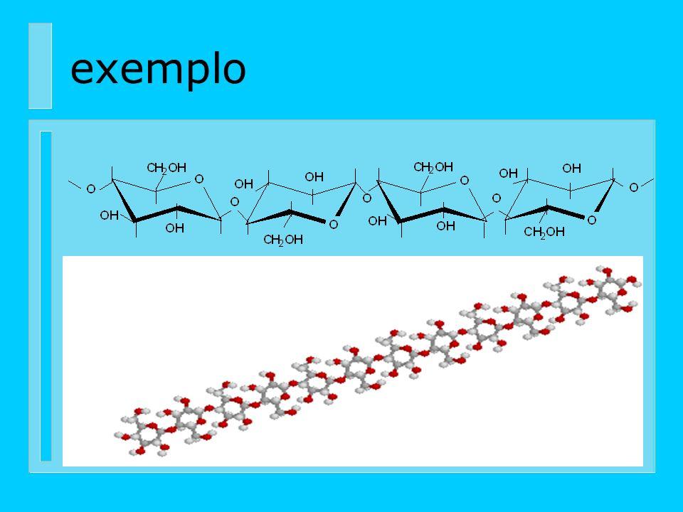Formação da parede celular Molécula de glucose Celubiose Moléculas de celulose Fibrila elementar Microfibrila Macrofibrila Fibra ou célula
