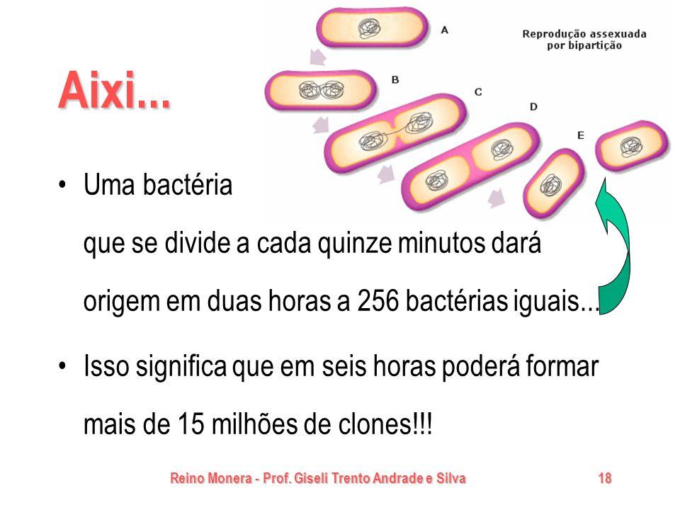 Reino Monera - Prof. Giseli Trento Andrade e Silva18 Aixi... Uma bactéria que se divide a cada quinze minutos dará origem em duas horas a 256 bactéria