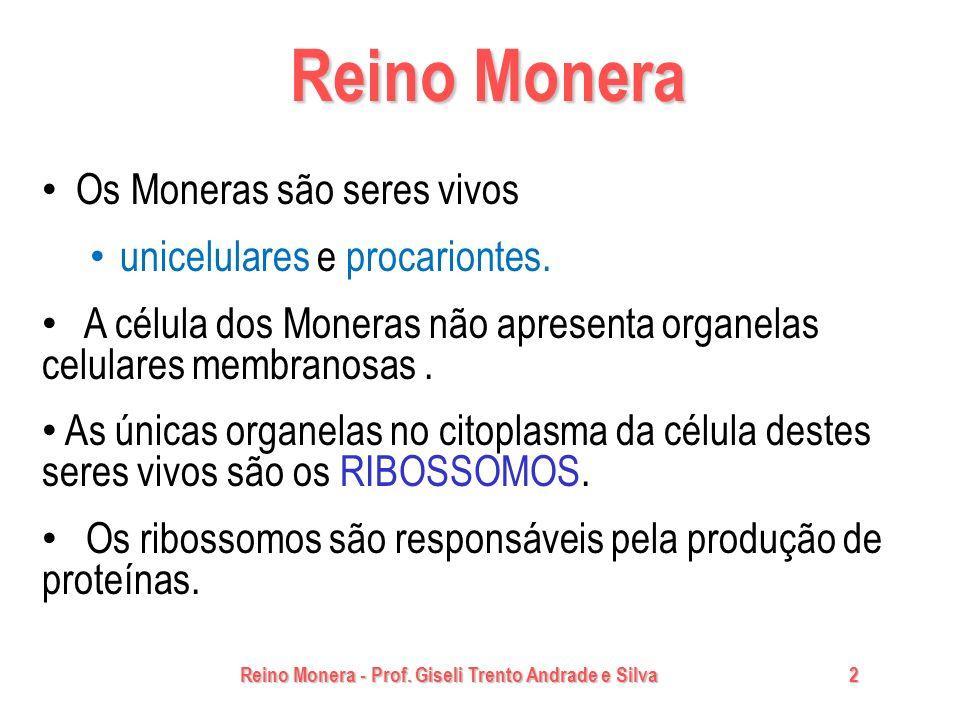 Reino Monera - Prof. Giseli Trento Andrade e Silva2 Reino Monera Os Moneras são seres vivos unicelulares e procariontes. A célula dos Moneras não apre