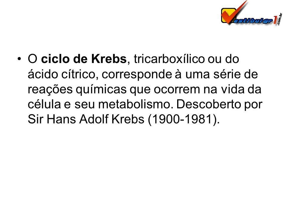 O ciclo de Krebs, tricarboxílico ou do ácido cítrico, corresponde à uma série de reações químicas que ocorrem na vida da célula e seu metabolismo. Des