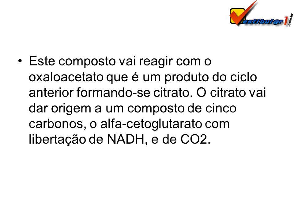 Este composto vai reagir com o oxaloacetato que é um produto do ciclo anterior formando-se citrato. O citrato vai dar origem a um composto de cinco ca
