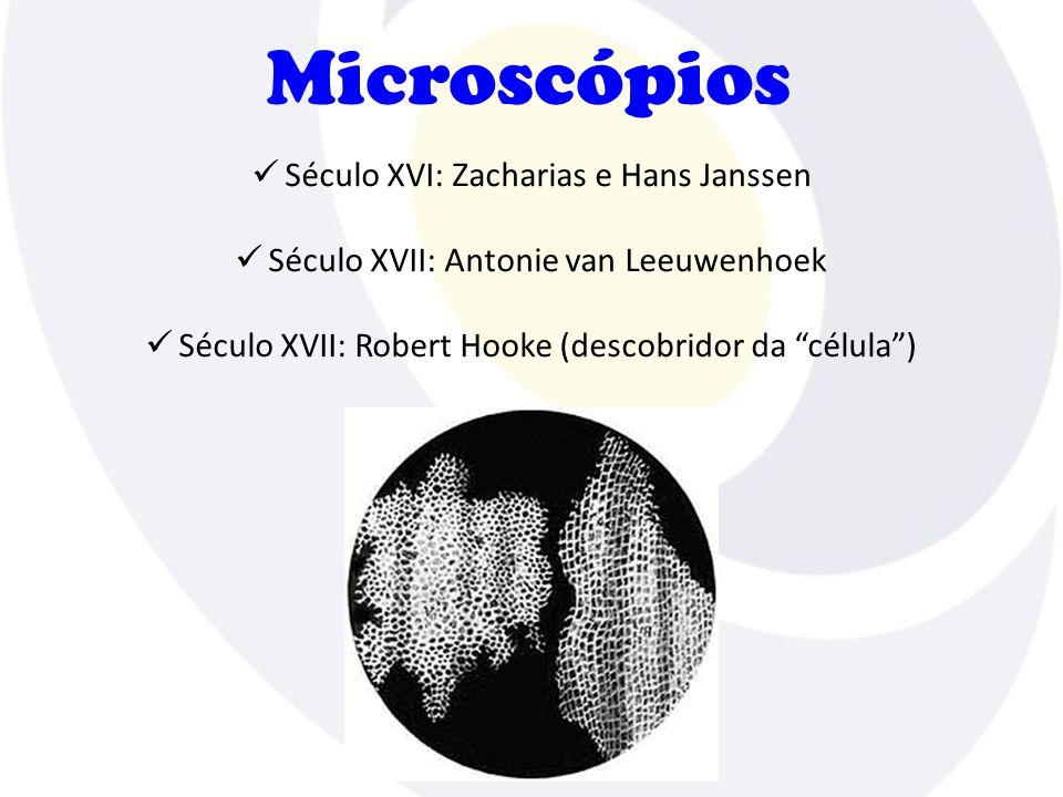 Microscópios Século XVI: Zacharias e Hans Janssen Século XVII: Antonie van Leeuwenhoek Século XVII: Robert Hooke (descobridor da célula)