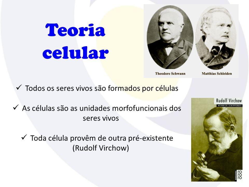 Teoria celular Todos os seres vivos são formados por células As células são as unidades morfofuncionais dos seres vivos Toda célula provêm de outra pré-existente (Rudolf Virchow)