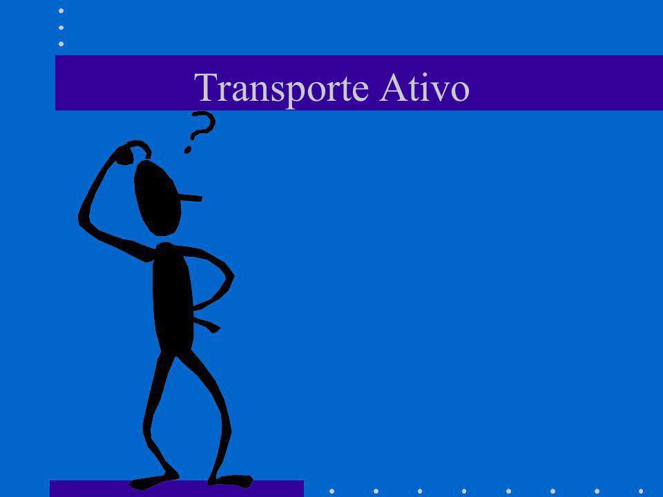 Transporte Ativo - Camada Celular.