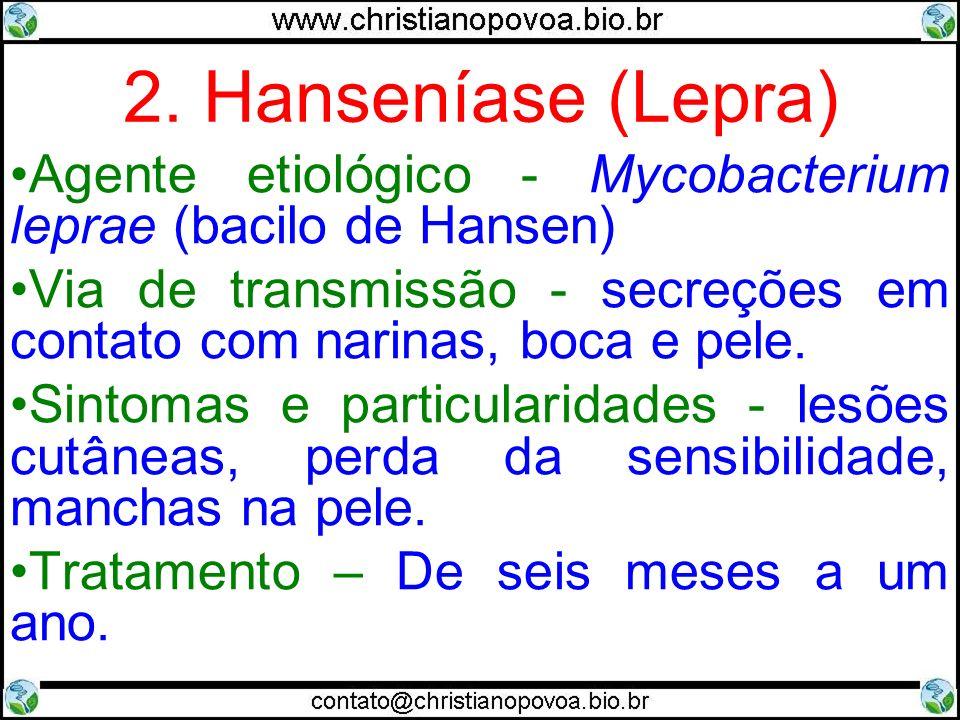 2. Hanseníase (Lepra) Agente etiológico - Mycobacterium leprae (bacilo de Hansen) Via de transmissão - secreções em contato com narinas, boca e pele.