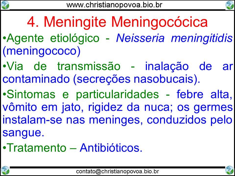 4. Meningite Meningocócica Agente etiológico - Neisseria meningitidis (meningococo) Via de transmissão - inalação de ar contaminado (secreções nasobuc