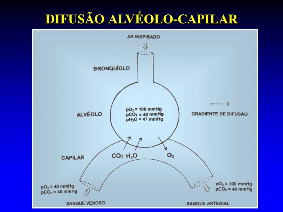 DIFUSÃO ALVÉOLO-CAPILAR