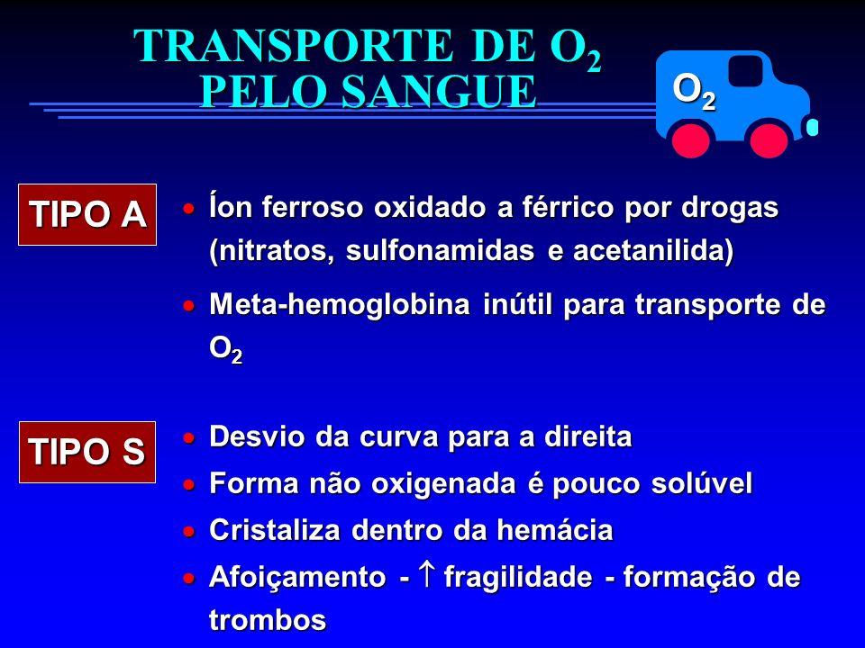 O2O2O2O2 TRANSPORTE DE O 2 PELO SANGUE TIPO A Íon ferroso oxidado a férrico por drogas (nitratos, sulfonamidas e acetanilida) Íon ferroso oxidado a fé