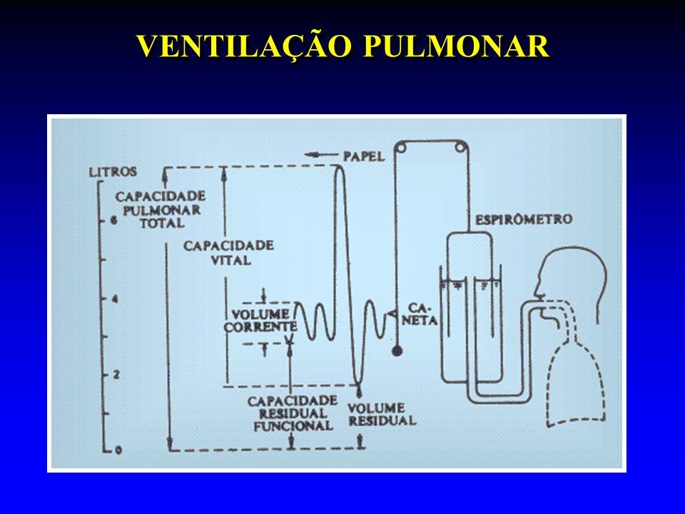 VOLUMES E FLUXOS PULMONARES