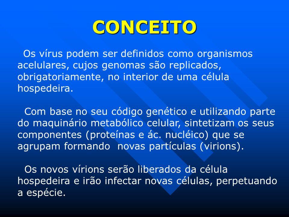 CONCEITO Os vírus podem ser definidos como organismos acelulares, cujos genomas são replicados, obrigatoriamente, no interior de uma célula hospedeira.