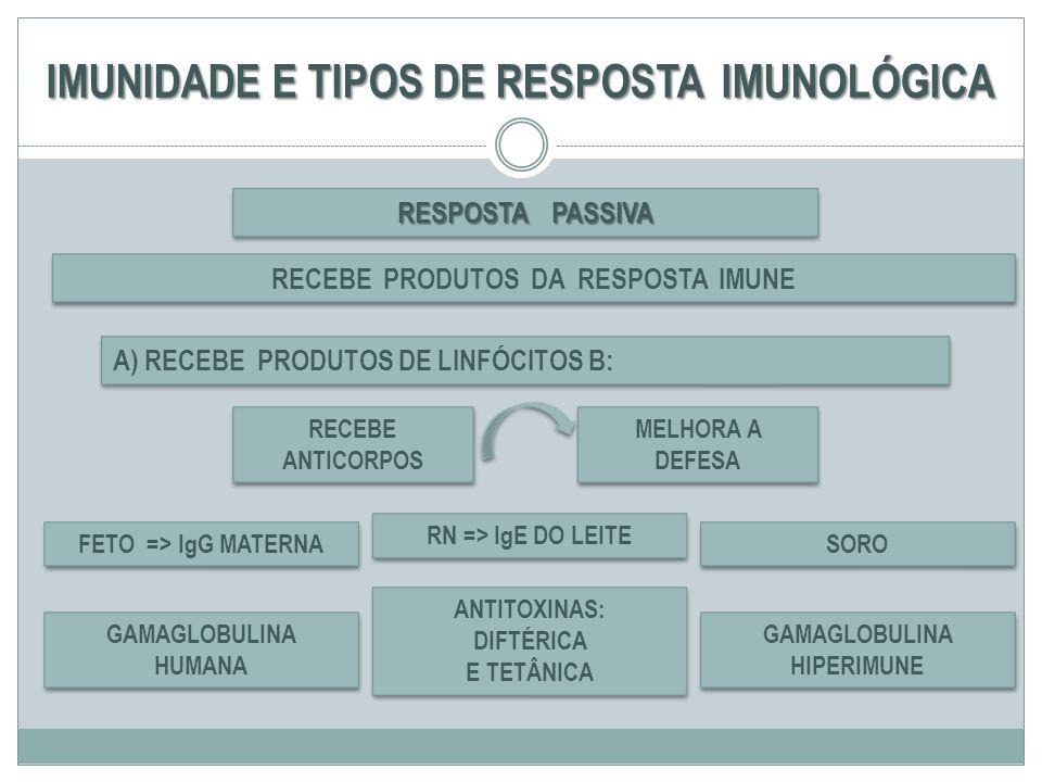 IMUNIDADE E TIPOS DE RESPOSTA IMUNOLÓGICA RESPOSTA PASSIVA RECEBE ANTICORPOS A) RECEBE PRODUTOS DE LINFÓCITOS B: RECEBE PRODUTOS DA RESPOSTA IMUNE MEL