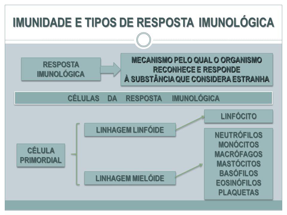 IMUNIDADE E TIPOS DE RESPOSTA IMUNOLÓGICA RESPOSTA IMUNOLÓGICA MECANISMO PELO QUAL O ORGANISMO RECONHECE E RESPONDE À SUBSTÂNCIA QUE CONSIDERA ESTRANH
