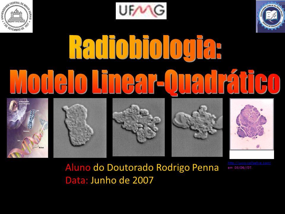 Aluno do Doutorado Rodrigo Penna Data: Junho de 2007 http://www.cellsalive.com/ http://www.cellsalive.com/ em 03/06//07.