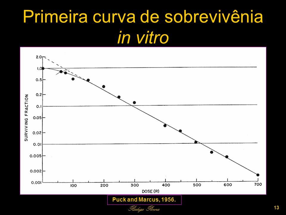Primeira curva de sobrevivênia in vitro Rodrigo Penna 13 Puck and Marcus, 1956.