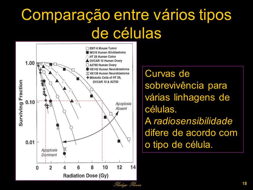 Comparação entre vários tipos de células Rodrigo Penna 18 Curvas de sobrevivência para várias linhagens de células.