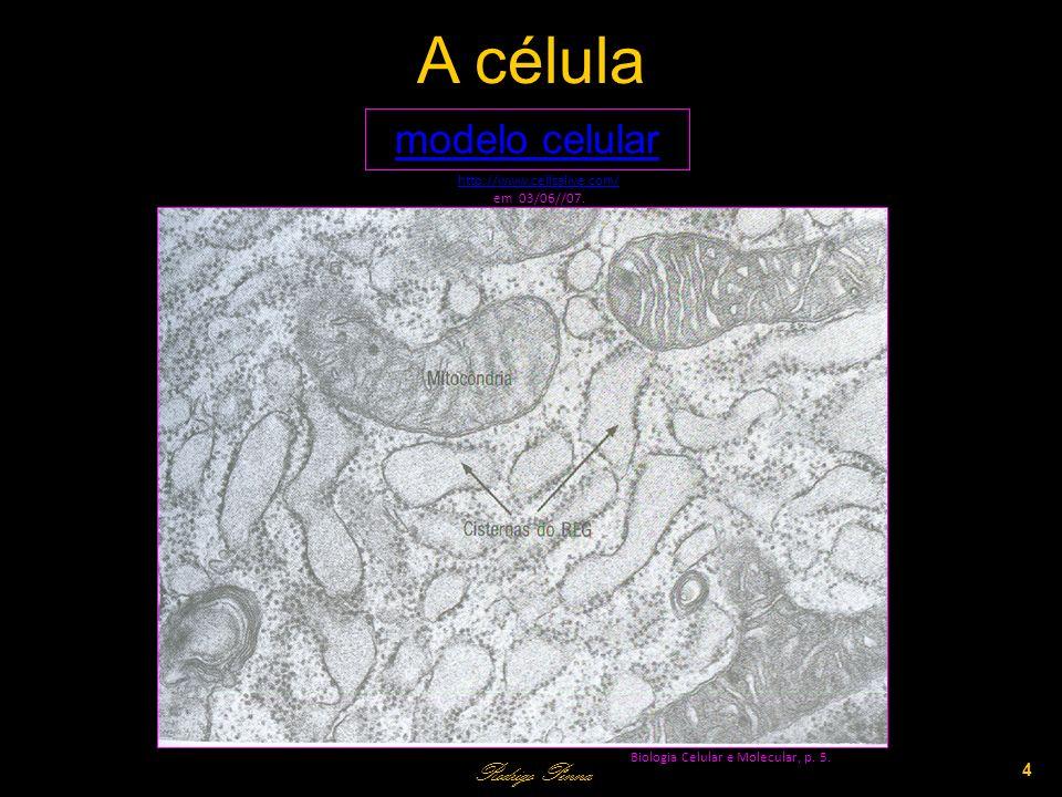 A célula Rodrigo Penna 4 Biologia Celular e Molecular, p.