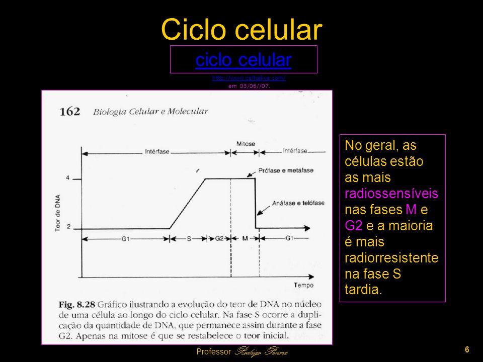 Sincronização de Células Culturas de células (in vitro) podem ser sincronizadas, facilitando a investigação da sensibilidade em diferentes estágios do ciclo.
