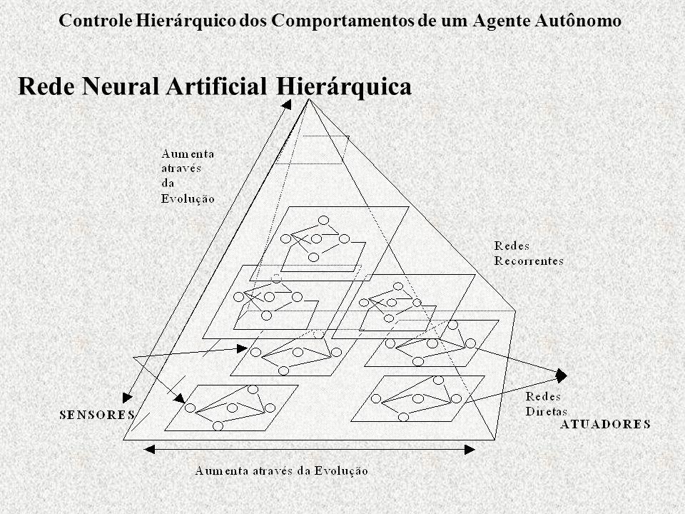 Controle Hierárquico dos Comportamentos de um Agente Autônomo Rede Neural Artificial Hierárquica