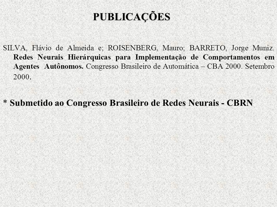 PUBLICAÇÕES SILVA, Flávio de Almeida e; ROISENBERG, Mauro; BARRETO, Jorge Muniz.