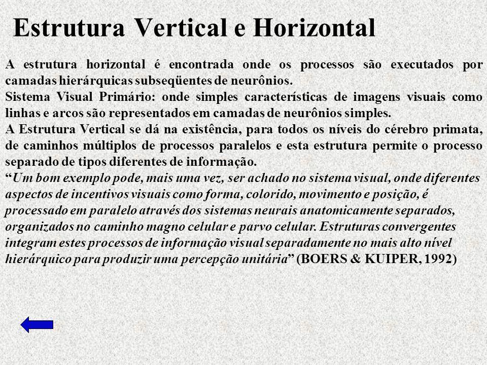 A estrutura horizontal é encontrada onde os processos são executados por camadas hierárquicas subseqüentes de neurônios.