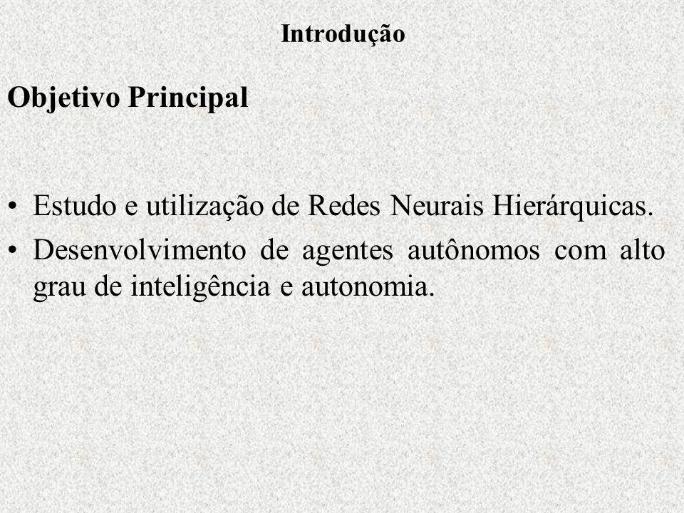 Introdução Estudo e utilização de Redes Neurais Hierárquicas.