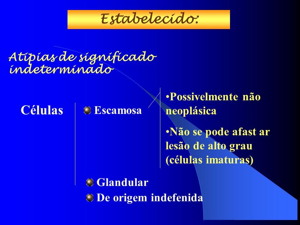 Atipias de significado indeterminado Escamosa Possivelmente não neoplásica Não se pode afast ar lesão de alto grau (células imaturas) Estabelecido: Células Glandular De origem indefenida