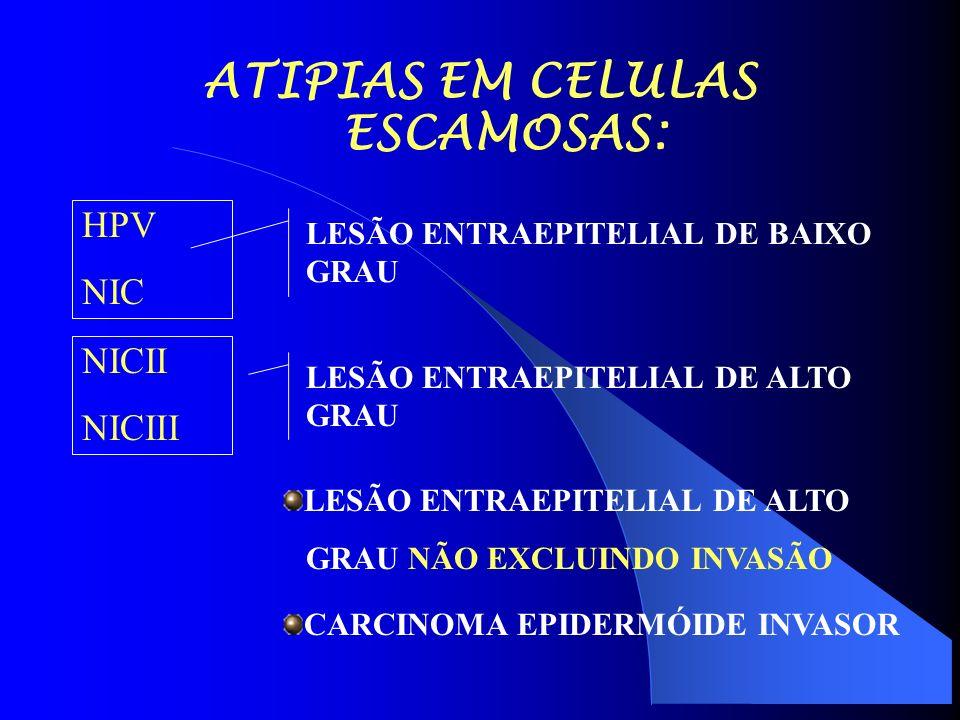 ATIPIAS EM CELULAS ESCAMOSAS: HPV NIC NICII NICIII LESÃO ENTRAEPITELIAL DE BAIXO GRAU LESÃO ENTRAEPITELIAL DE ALTO GRAU LESÃO ENTRAEPITELIAL DE ALTO GRAU NÃO EXCLUINDO INVASÃO CARCINOMA EPIDERMÓIDE INVASOR