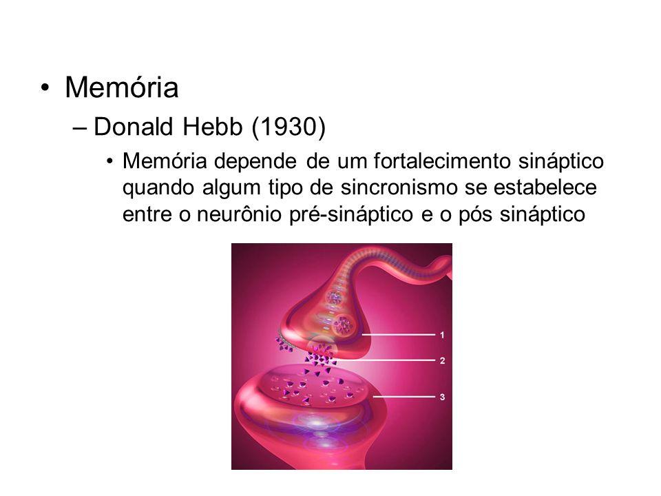 Memória –Donald Hebb (1930) Memória depende de um fortalecimento sináptico quando algum tipo de sincronismo se estabelece entre o neurônio pré-sináptico e o pós sináptico