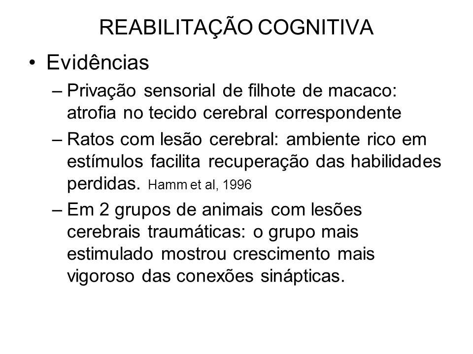 REABILITAÇÃO COGNITIVA Evidências –Privação sensorial de filhote de macaco: atrofia no tecido cerebral correspondente –Ratos com lesão cerebral: ambiente rico em estímulos facilita recuperação das habilidades perdidas.