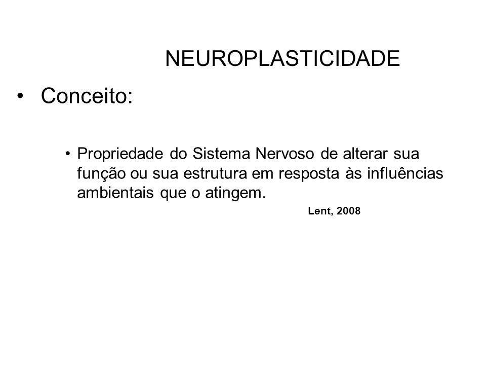 NEUROPLASTICIDADE Conceito: Propriedade do Sistema Nervoso de alterar sua função ou sua estrutura em resposta às influências ambientais que o atingem.