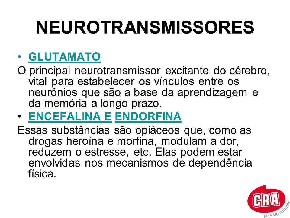 GLUTAMATO O principal neurotransmissor excitante do cérebro, vital para estabelecer os vínculos entre os neurônios que são a base da aprendizagem e da
