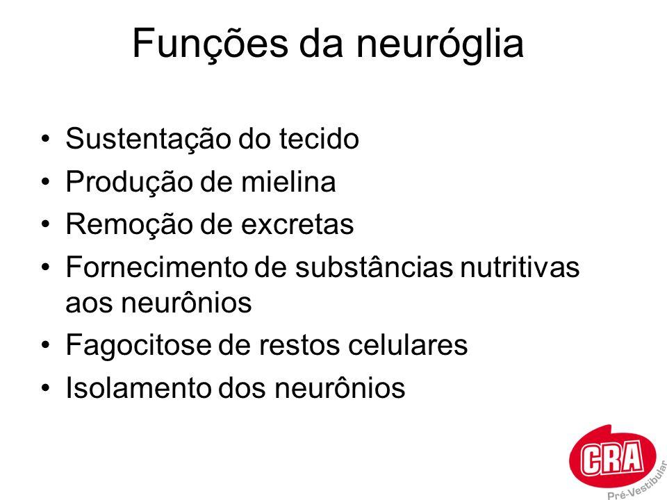 Funções da neuróglia Sustentação do tecido Produção de mielina Remoção de excretas Fornecimento de substâncias nutritivas aos neurônios Fagocitose de