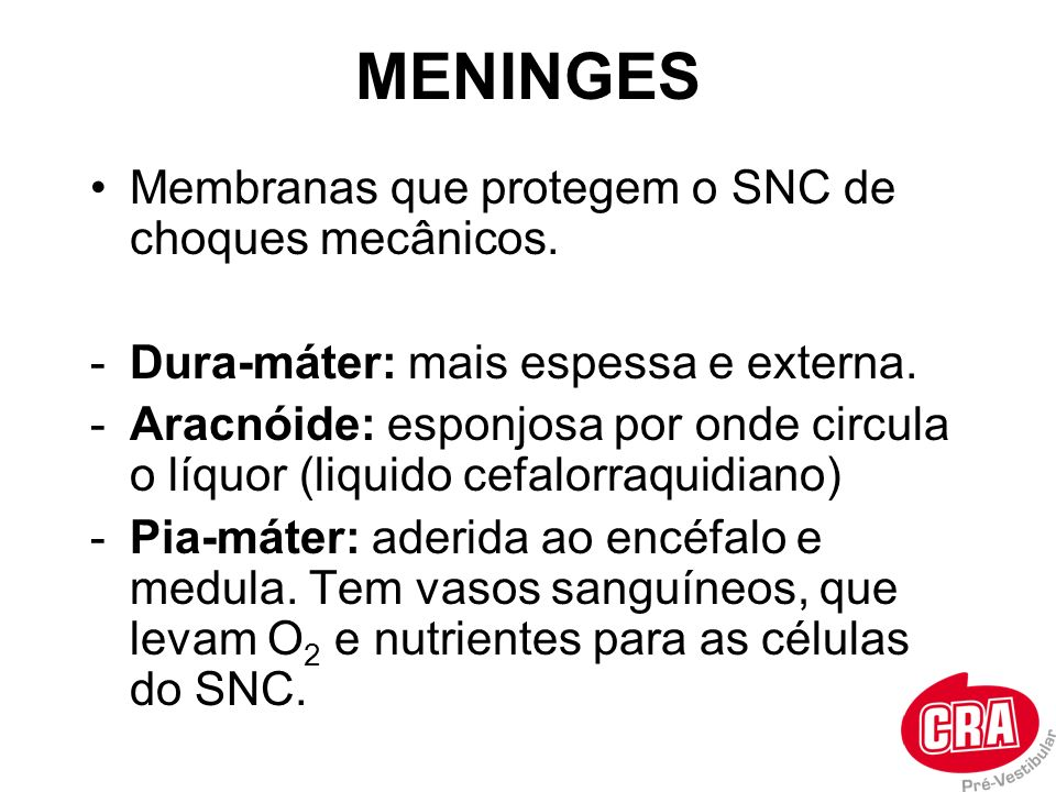 MENINGES Membranas que protegem o SNC de choques mecânicos. -Dura-máter: mais espessa e externa. -Aracnóide: esponjosa por onde circula o líquor (liqu
